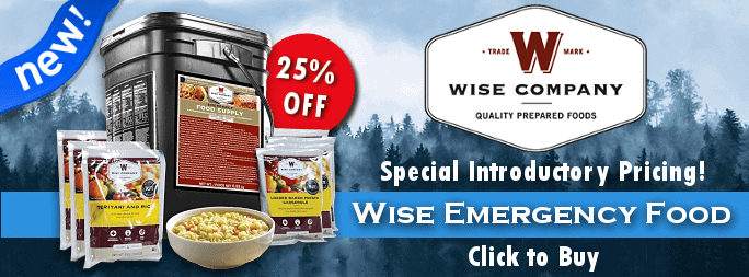 Introducing Wise Food