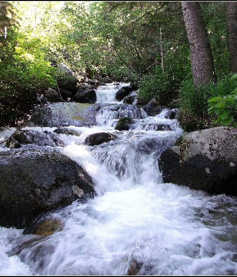 Beautiful Canadian water